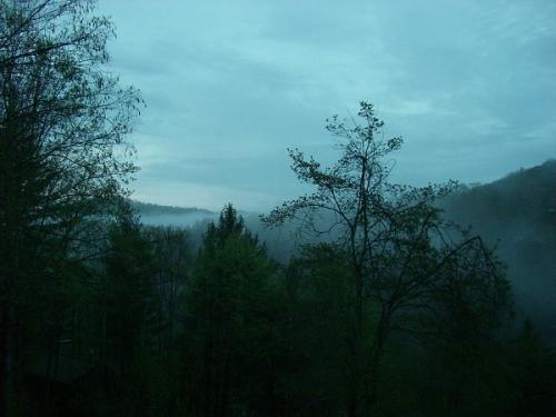27 mountain mist
